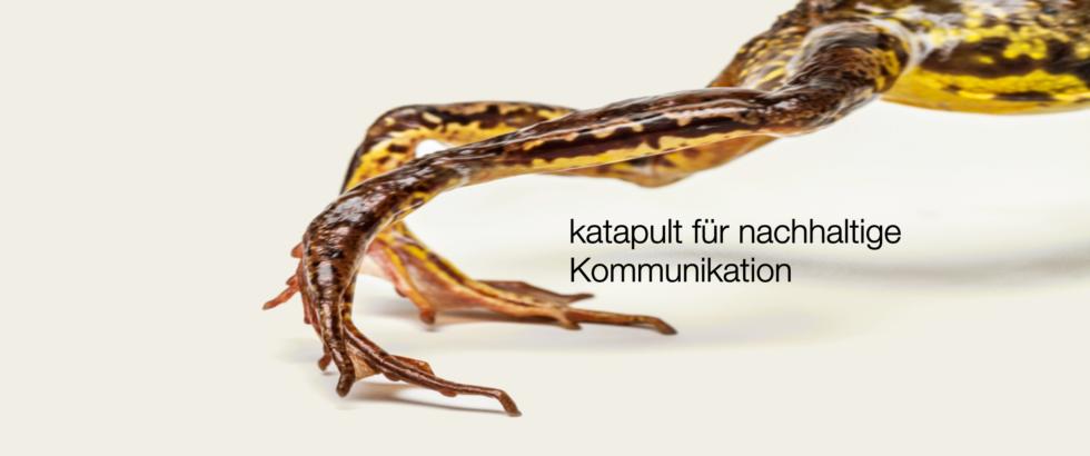 Frosch mit Text
